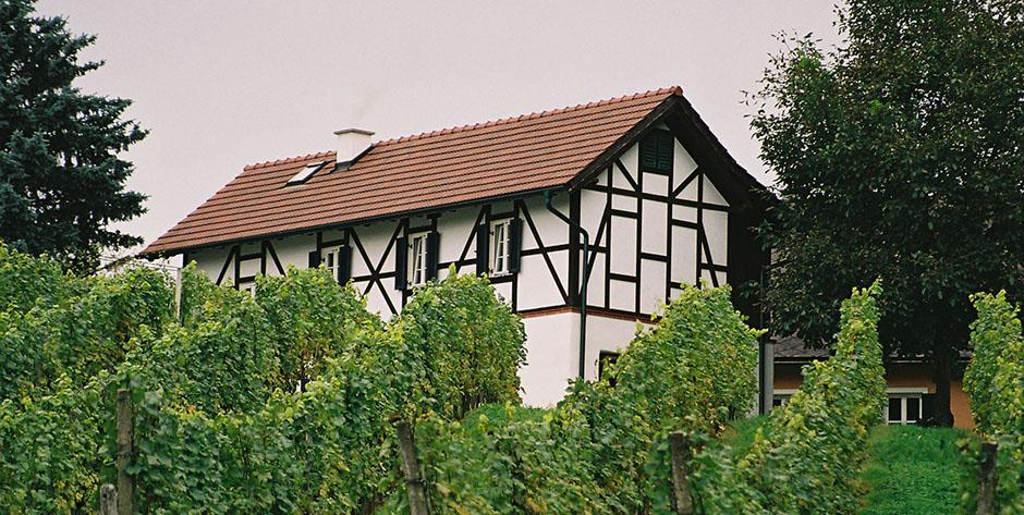 tourismus_betrieb_Gratz-Gästehaus-3c