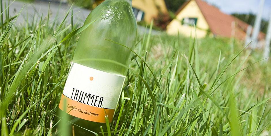 tourismus_betrieb_Trummer-Weinbau-6d